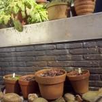 terracotta potten2